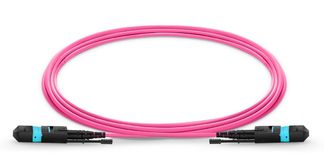 Professional Single Mode Optical Patch Cord 12 Fibers LSZH Bunch 3.0mm